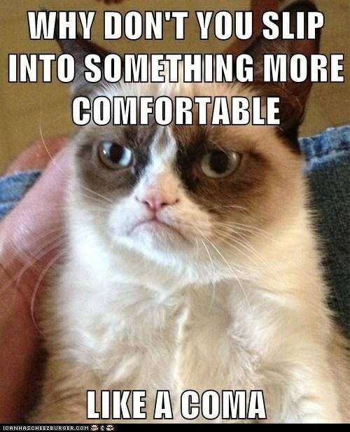 Grumpy Cat Why dont you slip into a coma