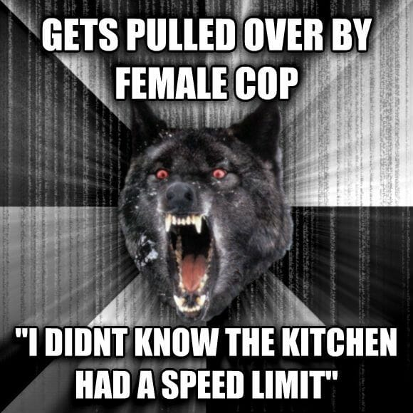 Insanity Wolf - pulled over female cop