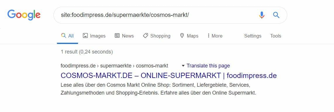 Google SERP Meta-Snippets